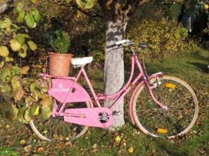 Pink Fahrrad